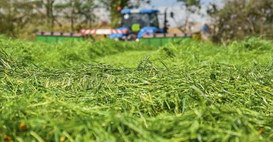 Schoon gras inkuilen