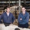 Grasbedrijf Van der Ham-Jansen haalt BEX-voordeel van 24 procent